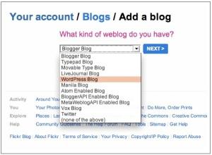 Choose Your Blog